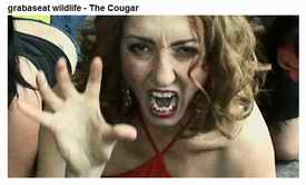 Cougar advert