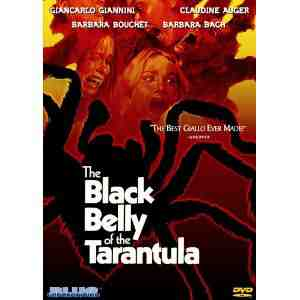 Black Belly Tarantula Region NTSC