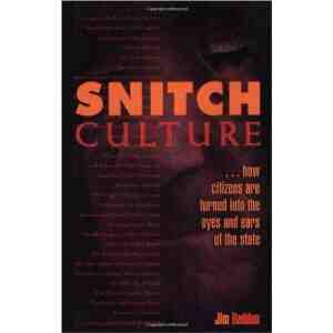 Snitch Culture Citizens Turned State