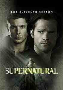 Supernatural Season DVD Jared Padalecki